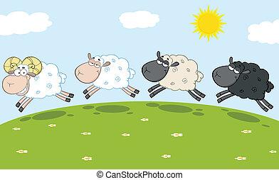 Ram Sheep Leading Three Sheep - Smiling Ram Sheep Leading...