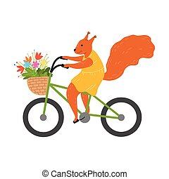 Smiling red squirrel riding bicycle and carrying flowers in basket