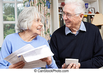 Smiling Senior Couple Reviewing Home Finances