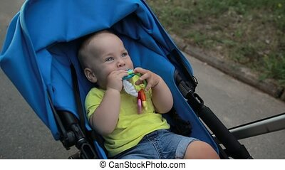 Smiling toddler baby boy sitting in pram outdoors - Portrait...