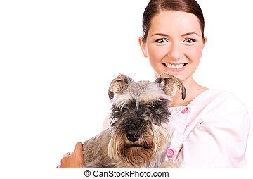 Smiling vet holding dog - A pretty smiling vet holding a...