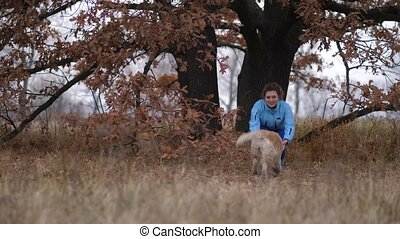 Smiling woman and dog during training outdoors - Cheerful...