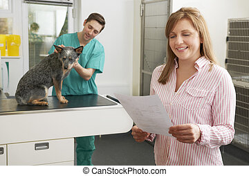 Smiling Woman Looking At Bill In Veterinary Surgery