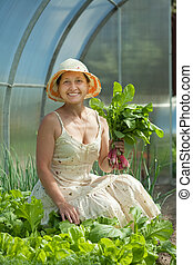 woman picking radish in greenhouse