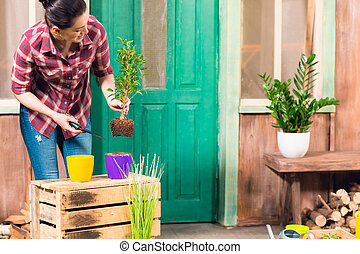 Smiling young woman removing plant with soil in pot