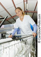 smily, γυναίκα , δούλεμα εις , ένα , μπουγάδα