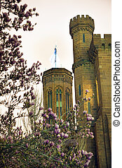 Smithsonian Towers Magnolias Evening Washington DC