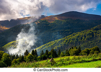 smoke from the fire in forest. mountainous summer landscape....