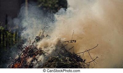 Smoke of Burning Garbage - Ecology polution with smoke of...
