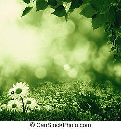 smokey, día de verano, en, el, pradera, resumen, natural, paisaje