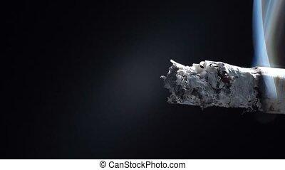 Smoking cigarette on black background - Video of smoldering ...
