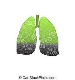 Smoking human lungs