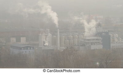 Smoking pipe industrial plant