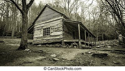 Smoky Mountain Cabin