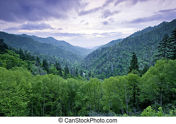 Smoky Mountains - Beautiful sunset view of the Smoky...