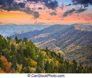 Smoky Mountains - Autumn morning in the Smoky Mountains...
