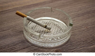 Smoldering Cigarette timelapse