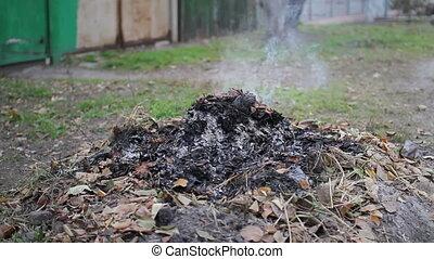 smoldering fire of leaves