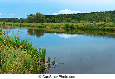 smooth channel with reflection of the sky, long river with overgrown green banks, artificial pond