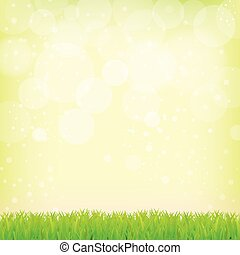 Smooth green background with grass and bokeh