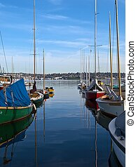 Smooth sailing ahead - Sailboats are lined up at the docks...