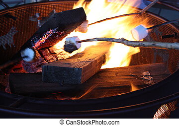 A perfect fire for creating smores