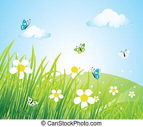 smukke, forår, eng