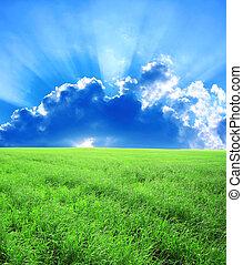 smukke, landskab