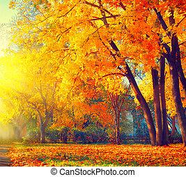 smukke, natur, autumn., park, autumnal, scene., fald