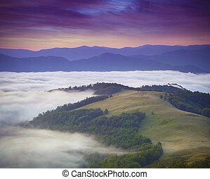 smukke, sommer, bjerge., landskab, solopgang