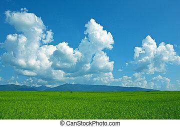 smukke, sommer, landskab., blå himmel, grønnes felt