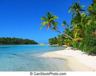smukke, strand, ind, ene fod ø, aitutaki, kok øer