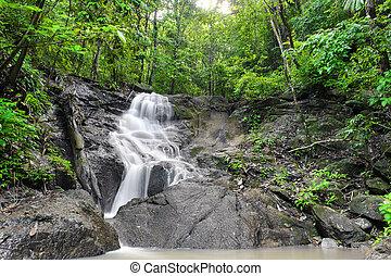smukke, tropisk, natur, regn, jungle., vandfald, skov, thailand
