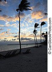 smukke, tropisk, solnedgang