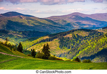snímek, carpathians, vyvýšenina, ohradit, selský
