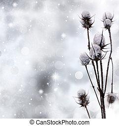 snö täckte, växt, på, gnistra, bakgrund