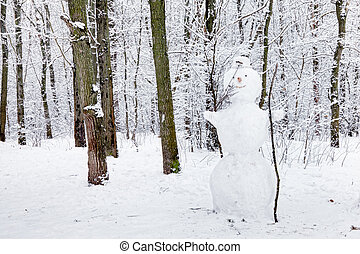 snögubbe, in, skog