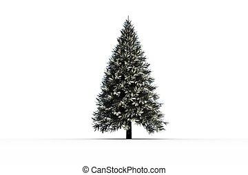 snöig, gran träd, digitally genererade