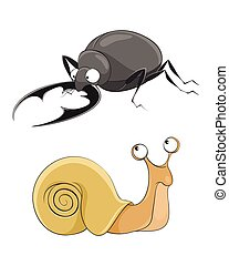 Snail and stag-beetle - Vector illustration of a snail and...