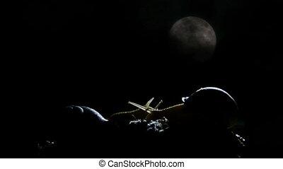 snail at night timelapse