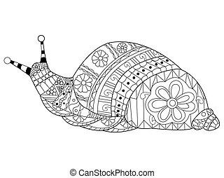 Snail coloring vector for adults