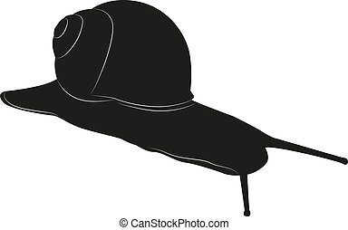 Snail isolated on a white background. Vector black silhouette