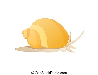 Snail Isolated on White Background Vector Poster