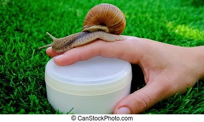 snail mucin-based cosmetics,hand cream, beauty skin care. High quality 4k footage