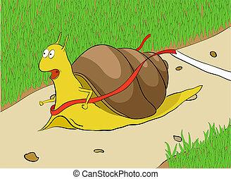 Snail on a racetrack