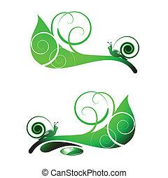 Snail on leaf  - Snail on green leaf