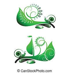 Snail on leaf - Snail travel on green leaf