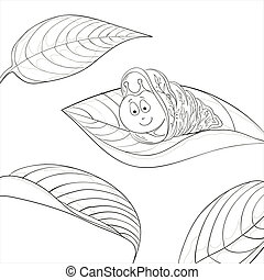 Snail on leave, contours - cartoon, cheerful snail on leaf,...