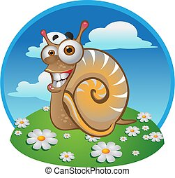 snail on the color background
