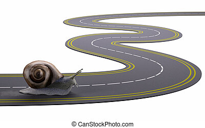 snail traveling a road slowly